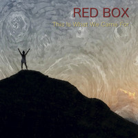 Red Box - This Is What We Came For