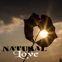 Various Artists - Natural Love