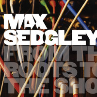 Max Sedgley - From the Roots to the Shoots
