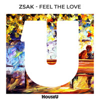 Zsak - Feel The Love