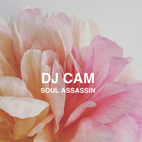 Dj Cam - Soul Assassin