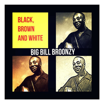 Big Bill Broonzy - Black, Brown and White