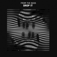 from the bass - Drop It