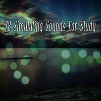 Healing Yoga Meditation Music Consort - 78 Simulating Sounds For Study