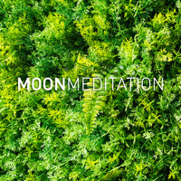 Moon Tunes and Moon Meditation - Deep Focus