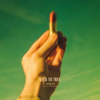 Seed to Tree - Integrity (You Don't Owe Nothing To Me)