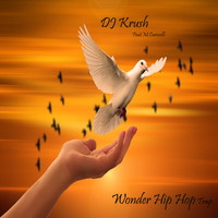 DJ Krush - Wonder Hip Hop Trap