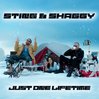 Sting - Just One Lifetime
