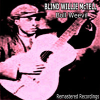 Blind Willie McTell - Boll Weevil