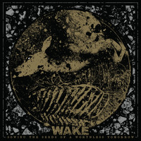 Wake - Sowing the Seeds of a Worthless Tomorrow (Reissue) (Explicit)