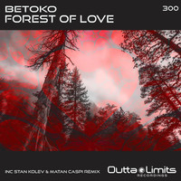 Betoko - Forest of Love