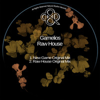 Gamelios - Raw House