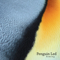 Xeming - Penguin Led