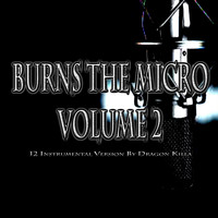 NewsVoicesProduction - Burns The Micro, Vol. 2