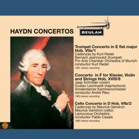 Various Artists - Haydn: Concertos