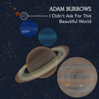 Adam Burrows - I Didn't Ask for This Beautiful World