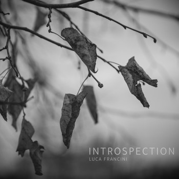 Luca Francini - Introspection