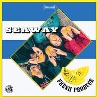 Seaway - Something Wonderful - Alternate Version