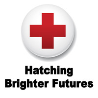 Jonathan Galland - Hatching Brighter Futures