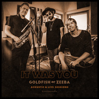 Goldfish - It Was You (With Zeeba) (Acoustic & Live Sessions)