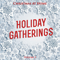 Various Artists - Christmas At Home: Holiday Gatherings, Vol. 5