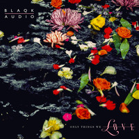 Blaqk Audio - Only Things We Love