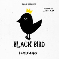Luciano - Better Tomorrow (Black Bird Riddym by City Kay)