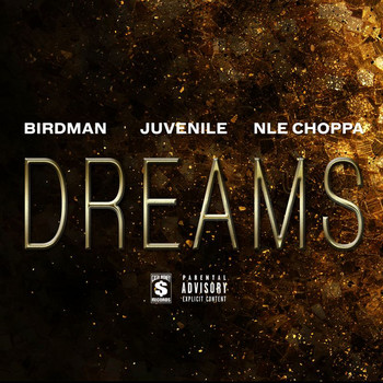Birdman - Dreams (Explicit)