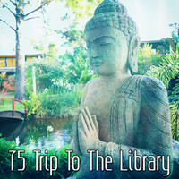 Healing Yoga Meditation Music Consort - 75 Trip To The Library
