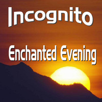 Incognito - Enchanted Evenng