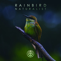 Rainbird - Naturalist