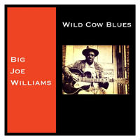 Big Joe Williams - Wild Cow Blues