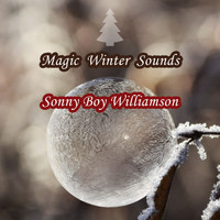 Sonny Boy Williamson - Magic Winter Sounds