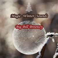 Big Bill Broonzy - Magic Winter Sounds