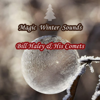 Bill Haley & His Comets - Magic Winter Sounds