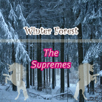 The Supremes - Winter Forest