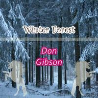 Don Gibson - Winter Forest