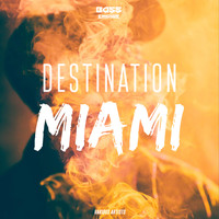 Various Artists - Destination Miami