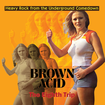 Various Artists / - Brown Acid - The Eighth Trip