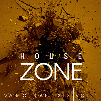 Various Artists - House Zone, Vol. 4