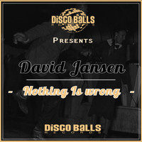 David Jansen - Nothing Is Wrong
