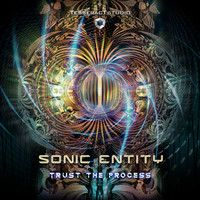 Sonic Entity - Trust The Process
