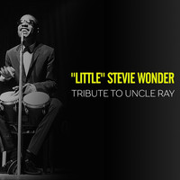 """Little"" Stevie Wonder - Tribute to Uncle Ray"