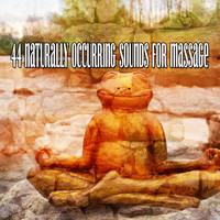 Healing Yoga Meditation Music Consort - 44 Naturally Occurring Sounds For Massage