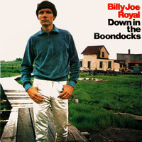 Billy Joe Royal - Down in the Boondocks