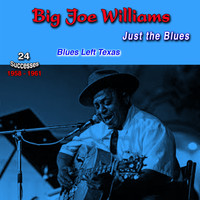 Big Joe Williams - Just the Blues, 1958-1961, (24 Successes) (Blues Left Texas)