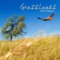 Peter Phippen - Grass Lands