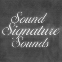 Theo Parrish - Sound Signature Sounds