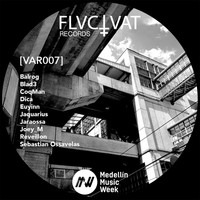 VA - V.A. Fluctuat Records (MMW Edition)