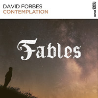 David Forbes - Contemplation